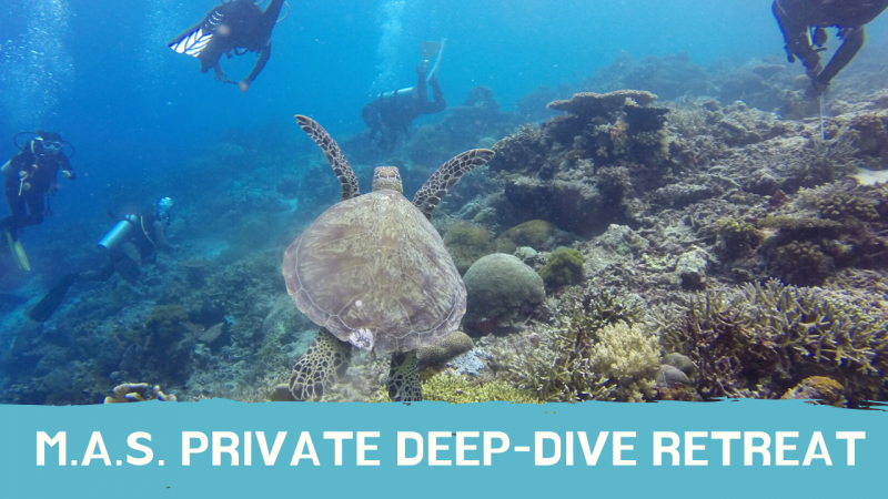 Product Category: Private Deep-Dive Retreat